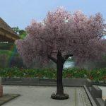庭具「木」の一覧 画像あり(住宅村ハウジング)