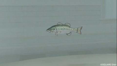 釣りで入手できる「おさかな」の種類(淡水魚)