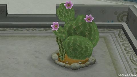 庭具「サボテン・植木等」の一覧 画像あり(住宅村ハウジング)
