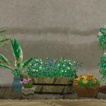家用の植物・花(家具)