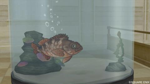 釣りで入手できる「おさかな」の種類(海水魚)