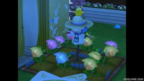 おたからの花3